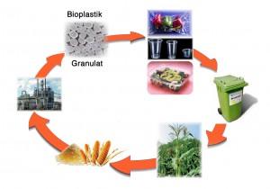 Bioplastik Kreislauf