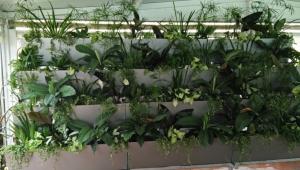 vertical ecosystem Spain