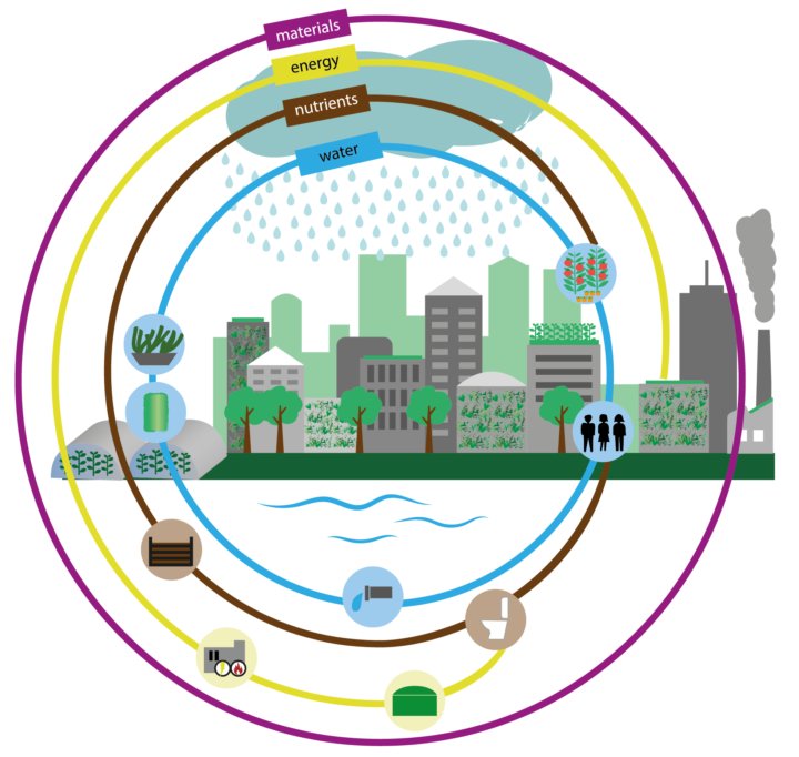A review of nature-based solutions for resource recovery in cities