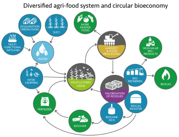 diversified agri-food system